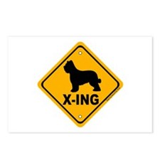 Briard X-ing Postcards (Package of 8)