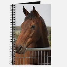 Unique Horse power Journal