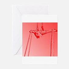 Cute Aerial silks Greeting Cards (Pk of 10)