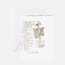 Front Greeting Cards (Pk of 20)