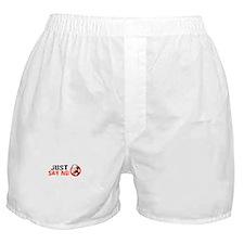 Just say no to McCain Boxer Shorts