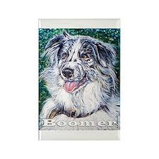 Australian Shepherd Rectangle Magnet (10 pack)