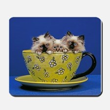 Kittens in a teacup Mousepad