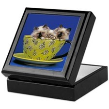 Kittens in a teacup Keepsake Box