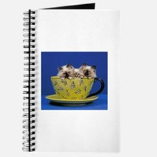 Kittens in a teacup Journal