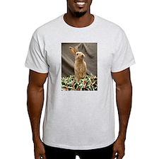 Christmas Bunny Ash Grey T-Shirt