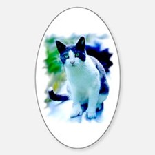 Polydactyl Cat Oval Decal
