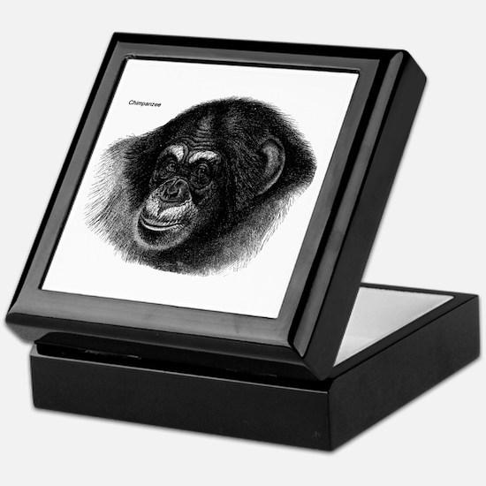 Chimpanzee Monkeys Keepsake Box