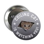 Ceiling Cat is Watching YOU! 2.25