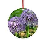 Globe Allium Ornament (Round)