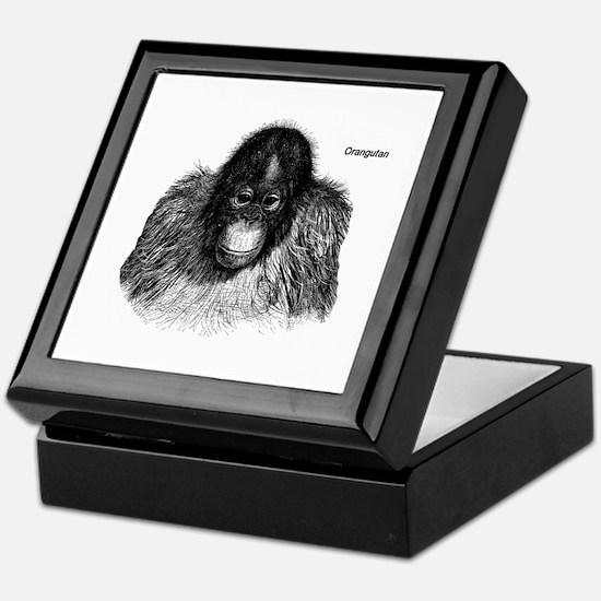 Orangutan Ape Monkey Keepsake Box