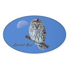 Sleepy Owl Oval Decal