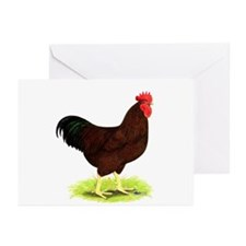 Rhode Island Red Rooster Greeting Cards (Pk of 20)