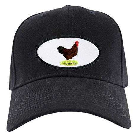Rhode Island Red Rooster Black Cap