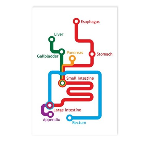 Gastrointestinal Subway Map Postcards (Package of