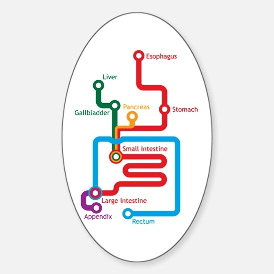 Gastrointestinal Subway Map Oval Decal