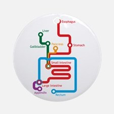 Gastrointestinal Subway Map Ornament (Round)