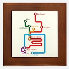 Gastrointestinal Subway Map Framed Tile