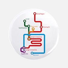 "Gastrointestinal Subway Map 3.5"" Button"