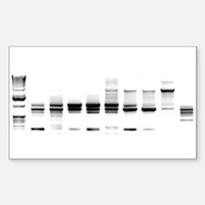 DNA Gel B/W Rectangle Decal