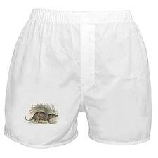 Thylacine Wolf Boxer Shorts