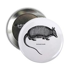 Nine-Banded Armadillo Button