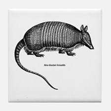 Nine-Banded Armadillo Tile Coaster