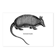 Nine-Banded Armadillo Postcards (Package of 8)