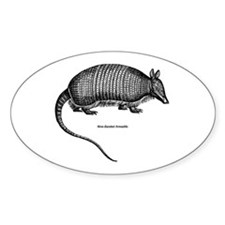 Nine-Banded Armadillo Oval Decal
