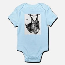 Fruit Bat Infant Creeper