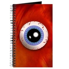 <b>MEAT & EYEBALL</b><br>160 Pages Notebook