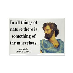 Aristotle 13 Rectangle Magnet
