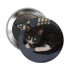 "Basket Kitty 2.25"" Button"
