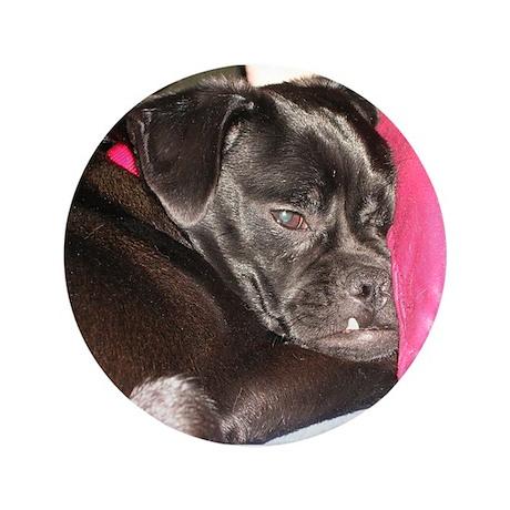 """Sleepy Pug Mug 3.5"""" Button"""