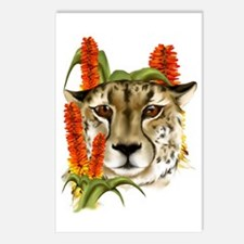 Cheetah with Aloe Postcards (Package of 8)