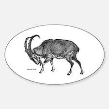 Bezoar Goat Oval Decal