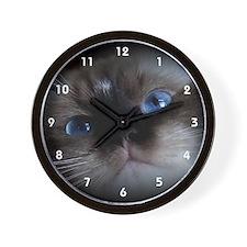 Seal Point Ragdoll Wall Clock
