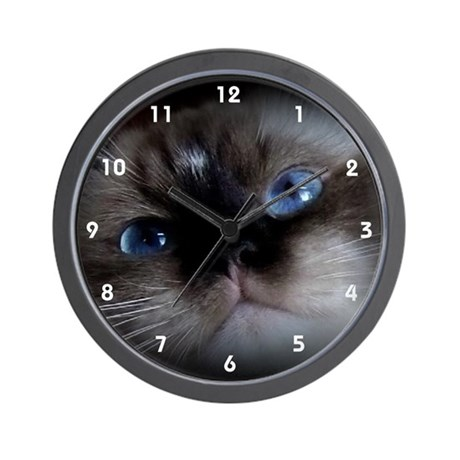 Seal Point Ragdoll Wall Clock