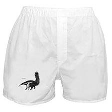 Giant Anteater Boxer Shorts
