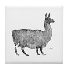 Llama Tile Coaster