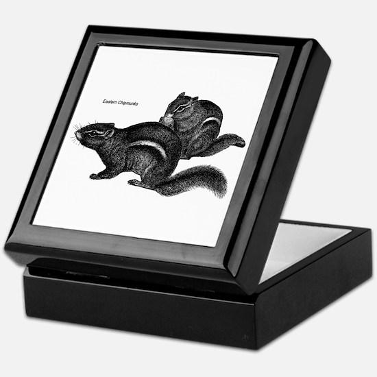 Eastern Chipmunks Keepsake Box