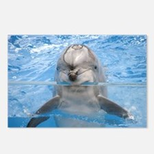 Helaine's Dolphin Postcards (Package of 8)