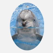 Helaine's Dolphin Ornament (Oval)
