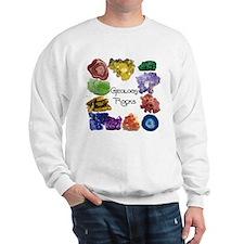 Geology Rocks 8 Sweatshirt