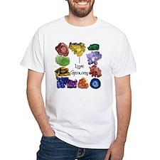 Geology Rocks 9 Shirt