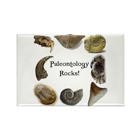 Paleontology 2 Rectangle Magnet