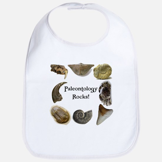 Paleontology 2 Bib