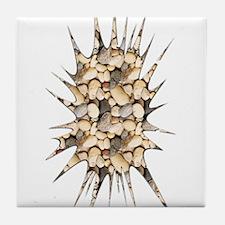 Small Rocks Splash -  Tile Coaster