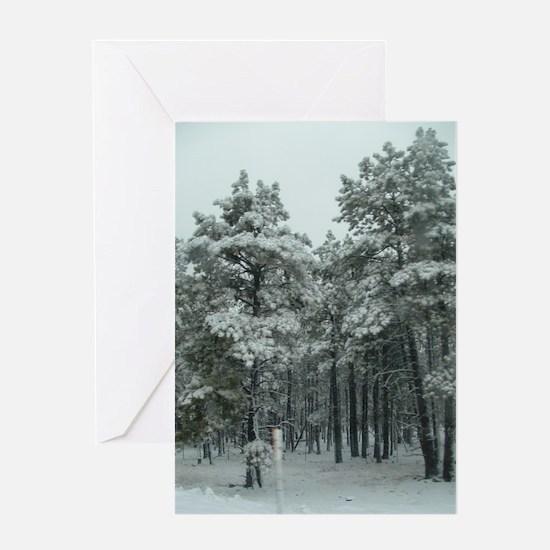 Winter Storm in Sedona, AZ Greeting Card