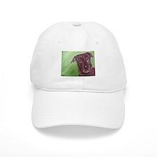 Truffle Baseball Cap